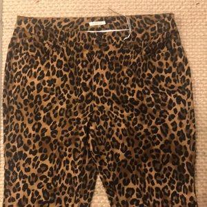 Jones New York Leopard Print Boot Cut Jeans Sz 16W